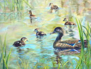 Lady Duck and Brood